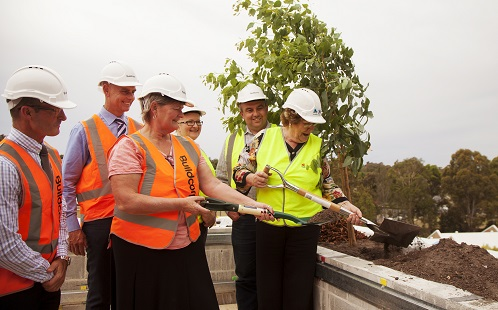 Topping Out 3