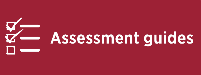 Assessment guides
