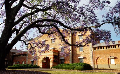 Whitlam Institute building