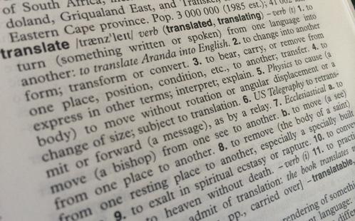 Dictionary shows translation