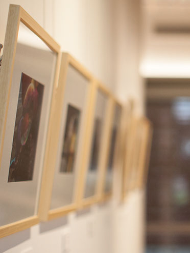 A row of framed pictures on a wall. The first is slightly in focus.