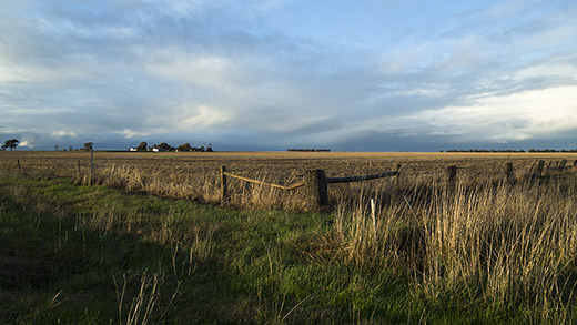 Landscape Near Goroke Victoria
