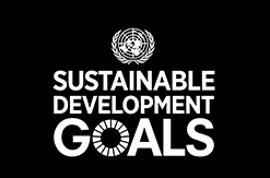UN SDG Logo for WSU Committment