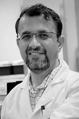 Anand Hardikar