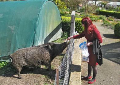 Helen Angelakis feeding Bruce