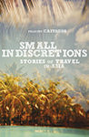 Felicity Castagna Small Indiscretions Book Cover