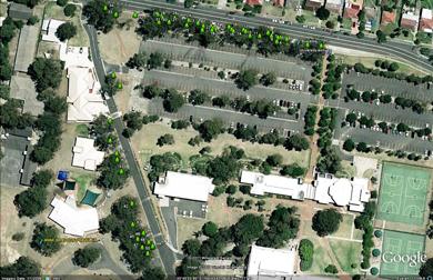 Grey Box Gum Google Map at Kingswood campus
