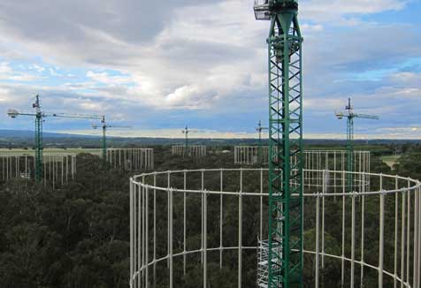 View of the EucFACE site from a crane