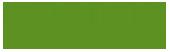 tansmedia research logo