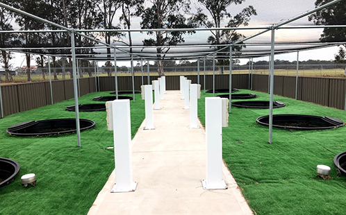The state-of-art experimental wetland facility at Western Sydney University's Hawkesbury campus.