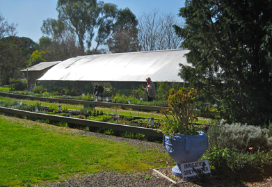 secret garden greenhouse.jpg