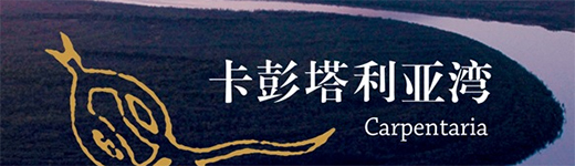 Chinese Carpentaria Book Cover Banner Section