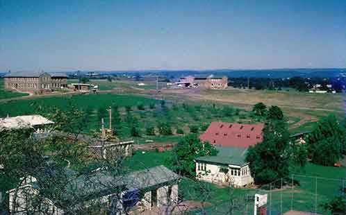 P6115 View from Main House facing west overlooking the orchard and laundry towards Dunheved and Claremont houses 1961