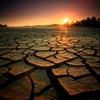 Saving Australia's Drylands_Nielsen