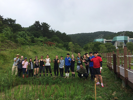 WSU and Korean student weeding rice patties at Sejahetra Centre