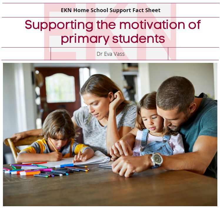 Supporting Motivation of Primary Children