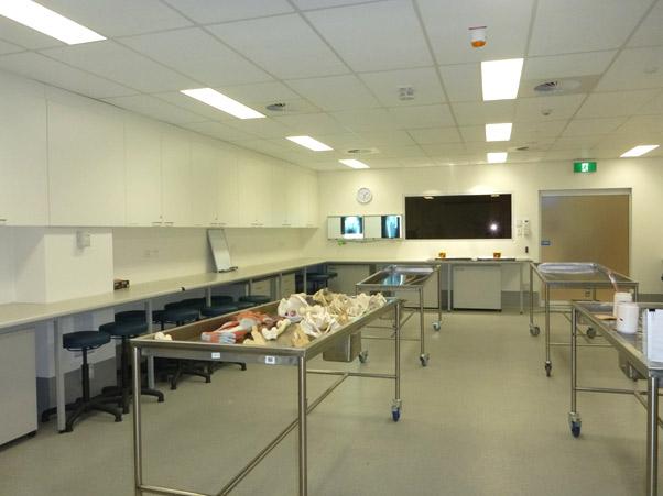Anatomy Facilities Western Sydney University