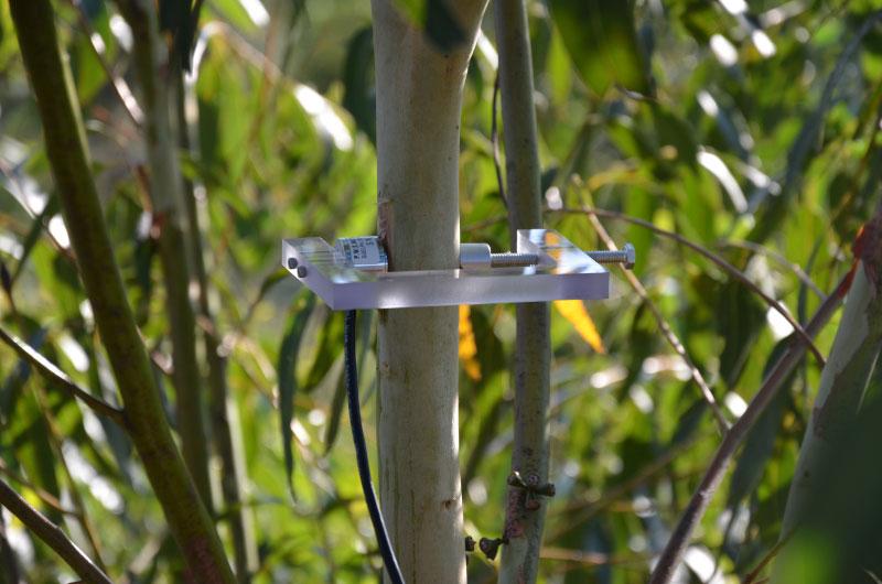 Hie Precision Farming Wireless Monitoring Of Plant
