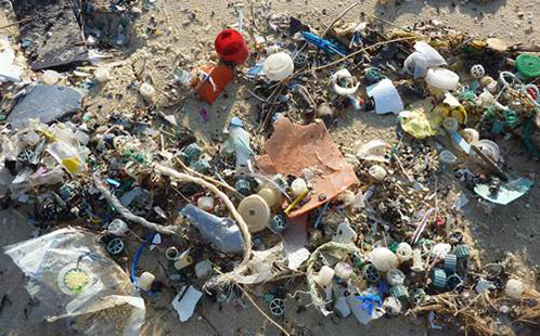Waste products washed up on a beach