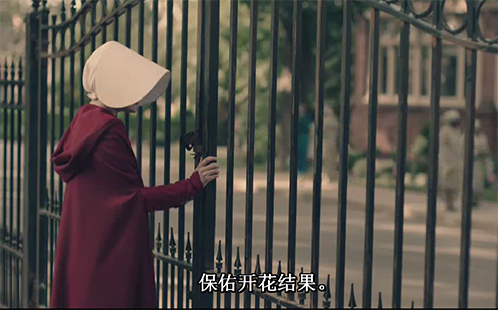 Handmaids Tale_Blessed_Be_the_Fruit_498x310