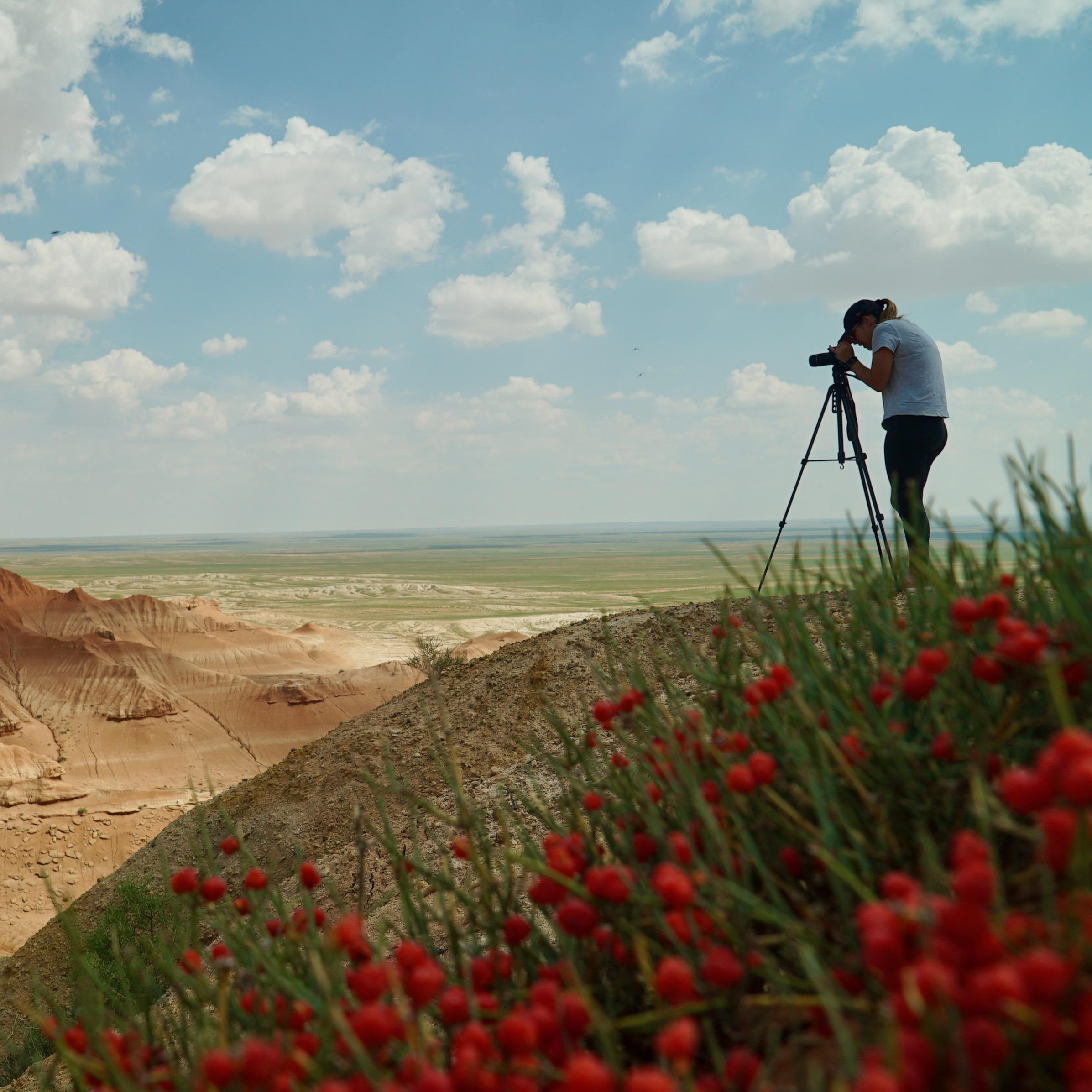 inner mongolia cover image