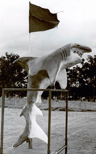 Visual & Performing Arts (VAPA) - 3D Illustration – Shark 1992 (P2302)
