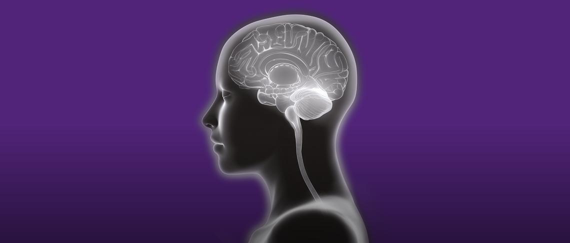 Neuromorphic Engineering - Brain