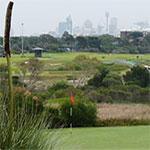ABC Golf 110