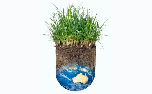 Grass on the world - credit Jeff Giniewicz