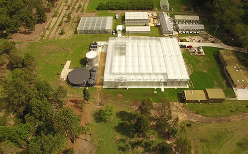 Greenhouse aerial shot