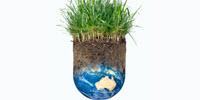 Protecting Australian Grasses