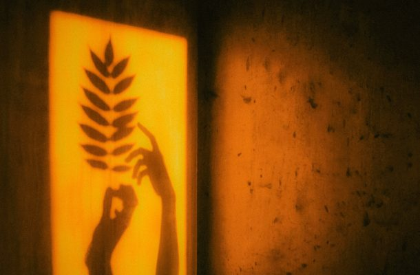 The shape of two hands reaching for and touching a fern-like leaf, surrounded by yellow light.
