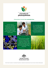 ARC Centre of Excellence In Translational Photosynthesis Brochure