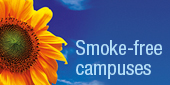 Towards Smoke-Free