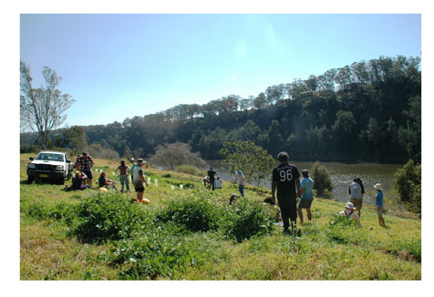 Volunteer community bush regeneration day