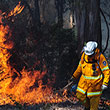 Backburning Operations near the Sydney Blue Mountains