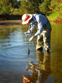 Water quality testing in nepean river using DO probe