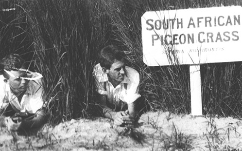 P446 Experimental Plots: Two students lying in a plot of South African Pigeon Grass [Hawkesbury Agricultural College (HAC)] 1900s