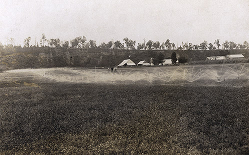 Irrigation spray on the River Farm - farm buildings in background and three men watching [Hawkesbury Agricultural College (HAC)] (P174)