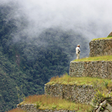 Guards at Machu Picchu, standing on the edge of the hillside