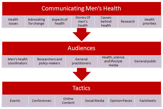 Diagram of the Health Communications process